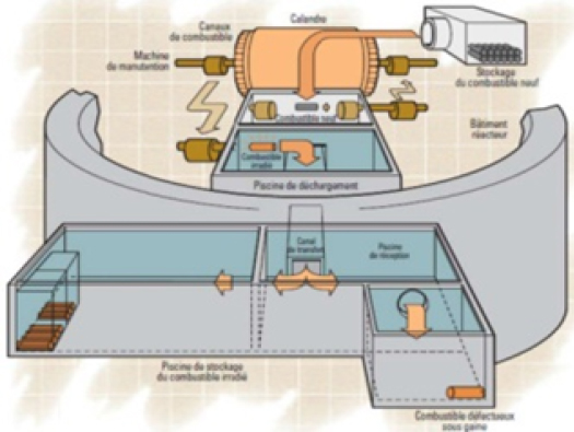 7 - Étude disposition déchets piscines auxiliares